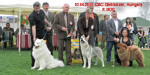 CAC Dombovar 03.04.2011.