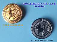 Zlatna i Srebrna značka HKS-a
