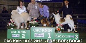 10.08.2013. CAC Knin