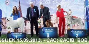 15.09.2013. CACIB Osijek
